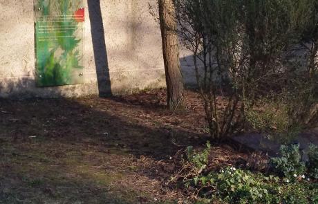 Waldfriedhof München. Gedenktafel (Gestaltung: Joachim Jung) des TMFM (2003) für das einstige Grab der Familie Mann (im Vordergrund rechts). Foto: Dirk Heißerer
